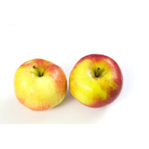 Bio Pomme bicolore x4